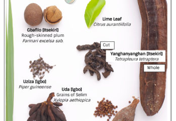 Nigerian spices | Kitchen Butterfly